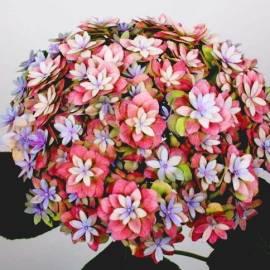 Hortensja ogrodowa 'Expression' Hydrangea macrophylla